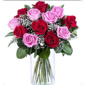 20 Pink and red roses in a vase