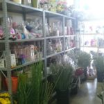 Gallery Florist Pretoria 12