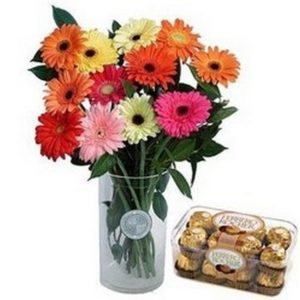 12 Gerberas and Chocolates F44