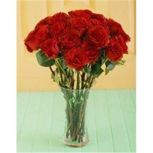 24 Red Roses in a Glass Vase V01