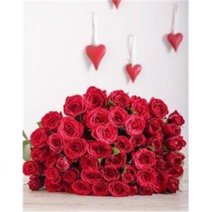 Red Roses V02